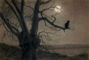 Gatto al chiaro di luna