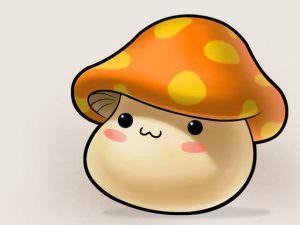 mushroom stefano