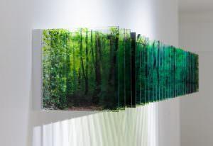 Nobuhiro Nakanishi nel morte senso quasimodo alberi cctm caracas