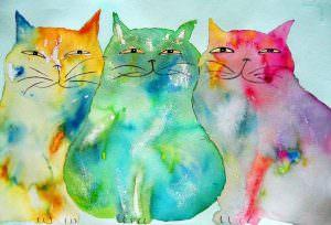 Luis Sepulveda cctm caracas miagolare gatto