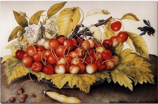 giovanna garzoni ciliegie bombo piatto natura morta caravaggio cctm caracas rinascimento medici