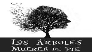 los arboles mueren de pie guiomar cuesta escobar colombia amore amor alberi piedi cctm caracas