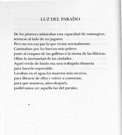 luz del paraiso luce paradiso santiago espinosa poesia latino america colombia cctm caracas nazzaro