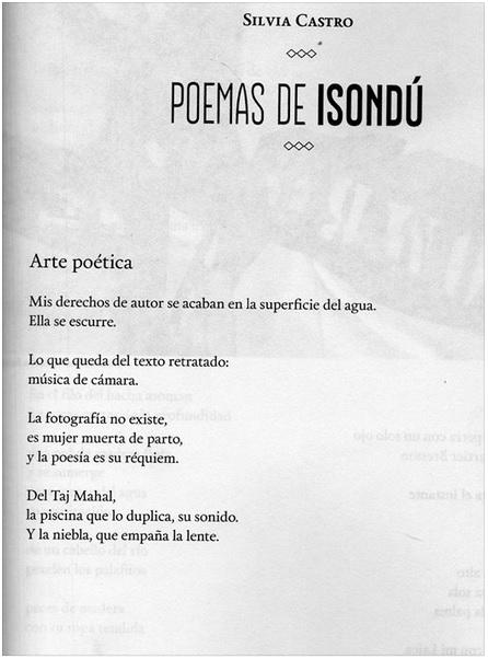 silvia castro arte poetica poesia latino america cctm caracas nazzaro argentina