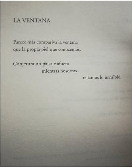 Hellman Pardo finestra ventana pelle poesia colombia latino america cctm nazzaro arte