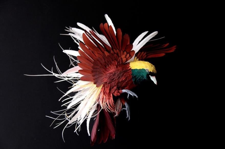 diana beltran herrera Greater bird of paradise sculture di carta miglior sito letterario miglior sito poesia cctm italia latino america colombia arte amore cultura poesia bellezza leggere