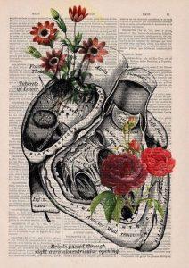 Rita Levi Montacini italia nobel cctm arte amore cultura bellezza poesia latino america a noi piace leggere miglior sito poesia miglior sito letterario