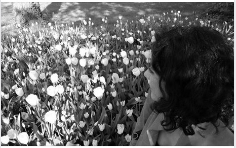 silvia rosa italia cctm poesia latino america a noi piace leggere