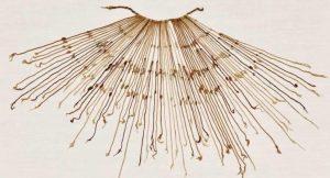 inca quipu cctm americhe precolombiane