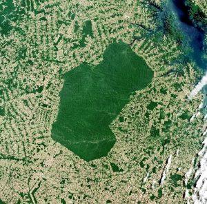amazzonia amazonia deforastation cctm