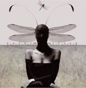Soledad Castresana argentina cctm poesia latino america italia a noi piace leggere
