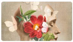 Gioia Castellani Tarabini farfalle cctm amore a noi piace leggere