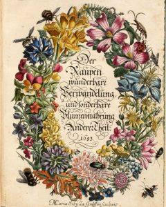 Metamorphosis insectorum Surinamensium merian cctm arte entomologia donne a noi piace leggere suriname