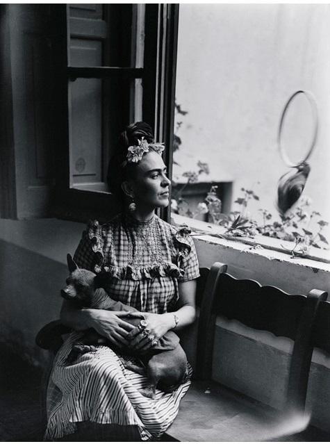 frida kahlo e il suo cane cctm donne a noi piace leggere tic tac