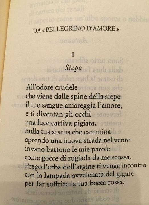 Corrado Govoni poeti crepuscolari siepe cctm poesia italia a noi piace leggere