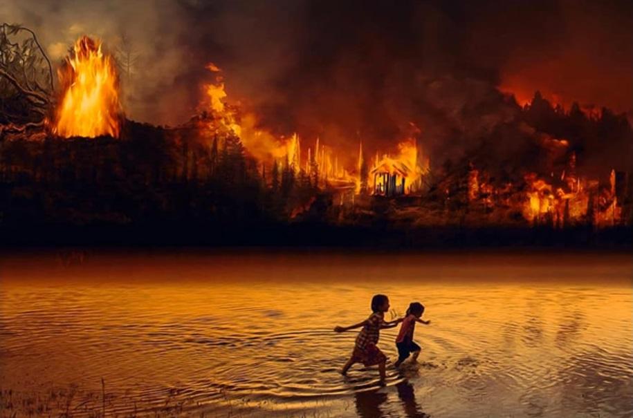 amazzonia amazonia Greenpeace Bolsonaro incendi cctm a noi piace leggere