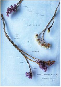 francesca fattinger poesie raccolte cctm a noi piace leggere