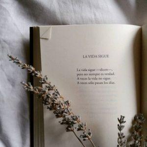 Karmelo Iribarren poesia la vita continua cctm a noi piace leggere