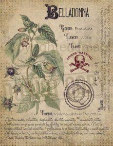 dizionario del diavolo belladonna Ambrose Bierce cctm a noi piace leggere
