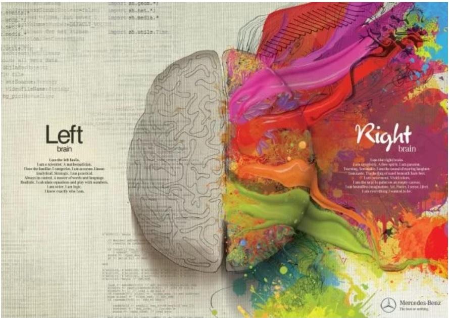 sono il cervello sinistro cctm mercedes a noi piace leggere