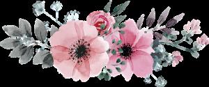 rosa di maggio alda merini italia poesia cctm a noi piace leggere